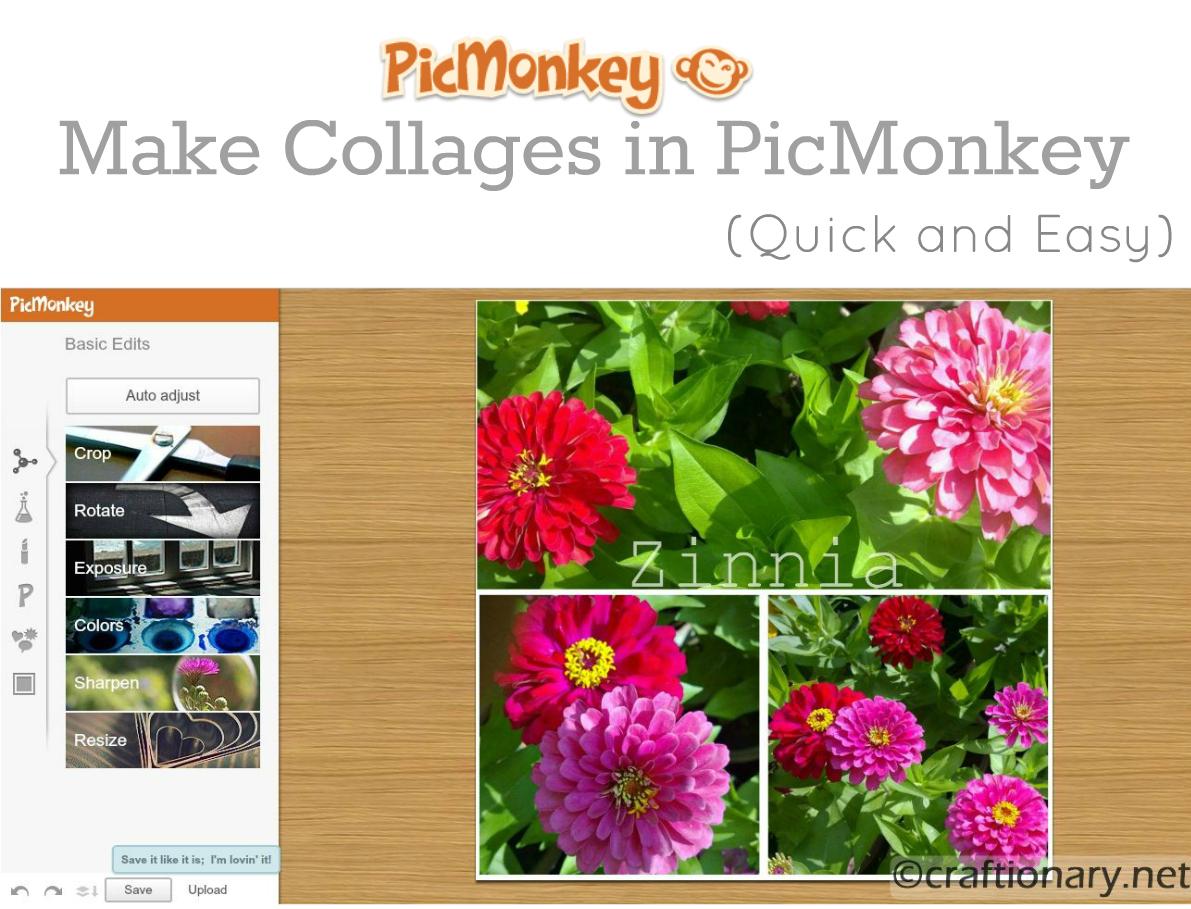 PICMONKEY - colagens virtuais