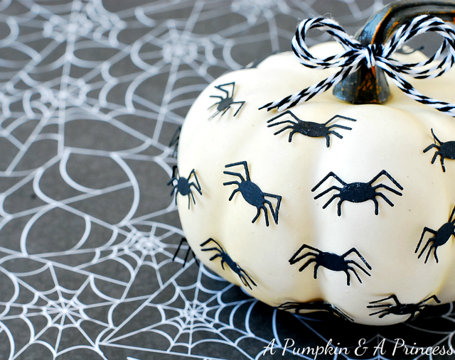 halloween spider pumpkin