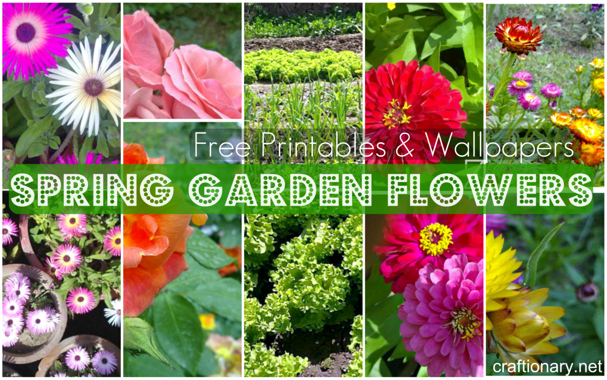 Craftionary spring in my garden free printables and wallpapers mightylinksfo
