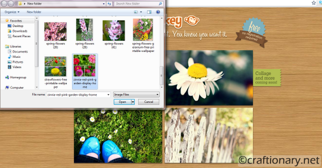 picture-editor-picmonkey-tutorial